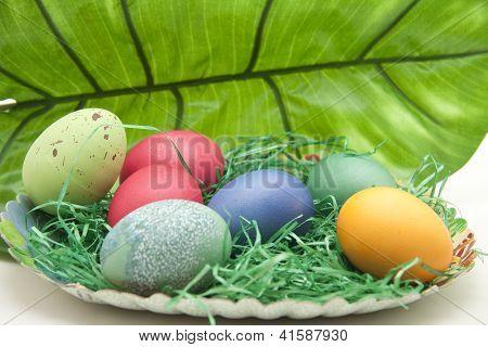 Different Eastereggs in Easterbasket