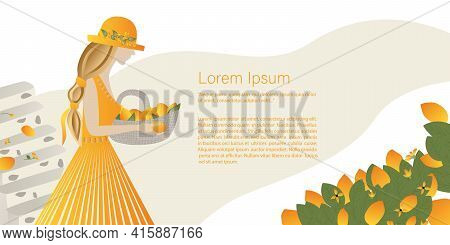 Sunny Fruits, Lemons, Oranges Concept.  Beautiful Girl Collects Lemons From The Tree Into A Basket.