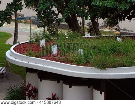 A Rooftop Garden On The Roof Of A Public Toilet Block Located In A Beachfront Suburb