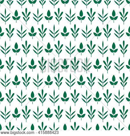Seamless Ornament With Green Rosemary, Thyme And Basil Twigs, Shoots Or Sprigs On White Background.
