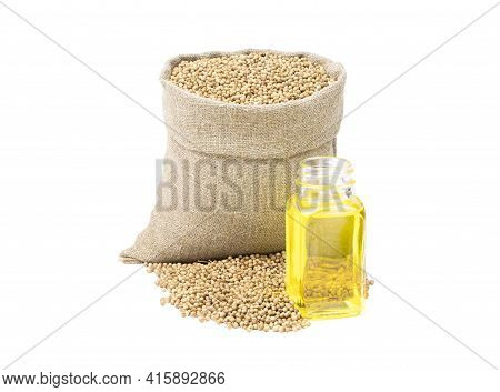 Coriander Essential Oil. Glass Bottle Of Dill Oil.coriander In A Sack Of Isolated On A White Backgro