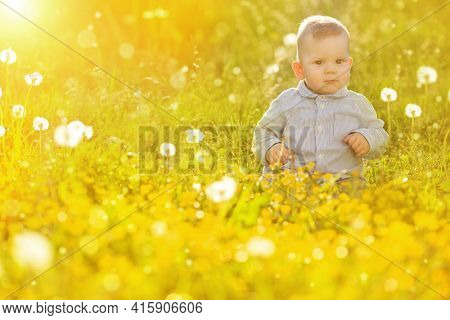 Spring Baby and dandelion at sunset Happy Kid sitting in a meadow Child in field Concept of protection Allergic to flowers pollen Allergy Backlit Sun Light Autumn Glow Sunshine  Learning new Education