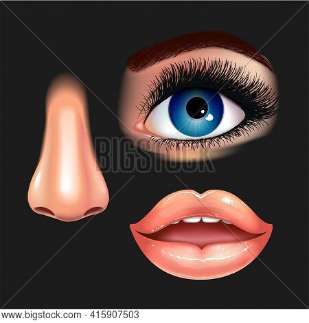 Set Of Beautiful Female Eye With Extended Eyelashes, Nose And Shining Mouth With Glossy Lips. Black