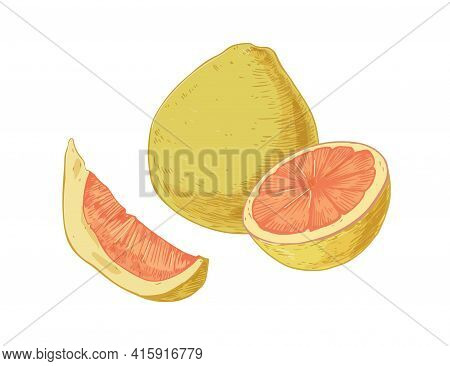 Whole Fruit, Slice, Segment And Half Of Pomelo Isolated On White Background. Composition Of Juicy Pu