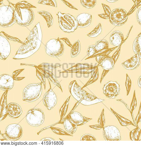 Seamless Pattern With Different Tropical Citrus Fruits. Endless Background In Retro Style With Hand-