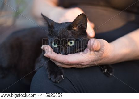 The Black Cat Is Sitting On Her Lap, Her Nose Buried In The Woman's Palm. The Concept Of Relations B