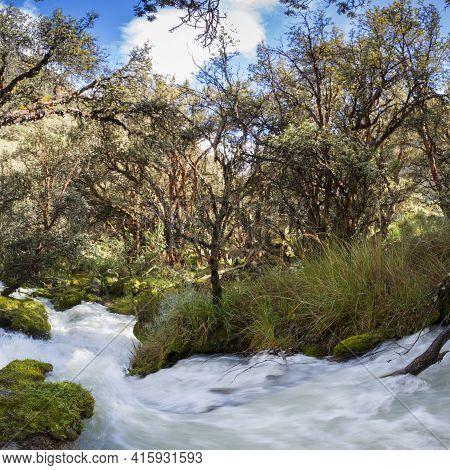 River And Lush Green Forest Near Huaraz In Cordillera Blanca, Peru