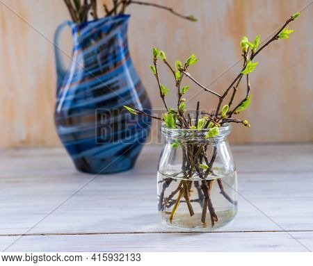 Blooming Green Branches In A Transparent Glass Vase On A Light Background.