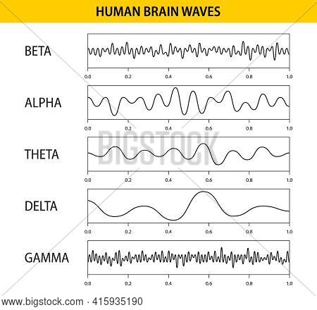 Beta, Alpha, Theta, Delta, Gamma Brain Waves. Set Of Brain Waves Oscillation. Human Rhythm, Types, A
