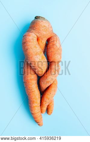 Funny Ugly Twisted Carrot On Blue Background