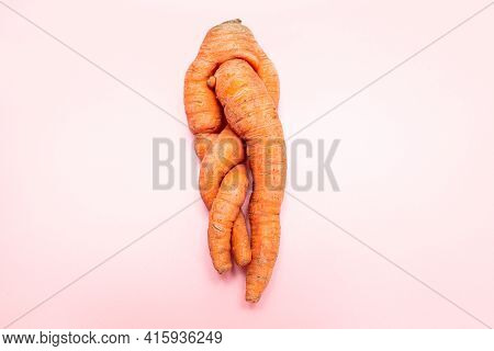 Funny Ugly Twisted Carrot On Pink Background