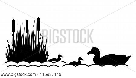 Duck With Ducklings On The Lake. Vector Illustration.