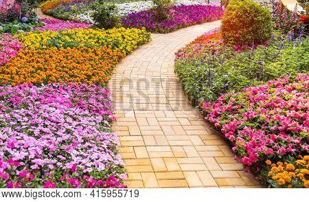 path leading through a flower garden