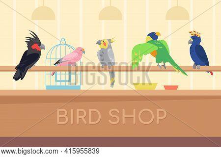Collection Of Multicolored Parrots In Bird Shop. Wild Tropical Exotic Birds For House Cartoon Vector