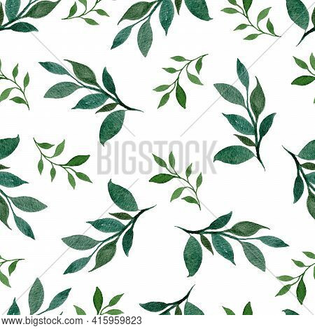 Greenery Seamless Pattern Isolated On White, Watercolor Botanic Illustration With Leaves And Branche