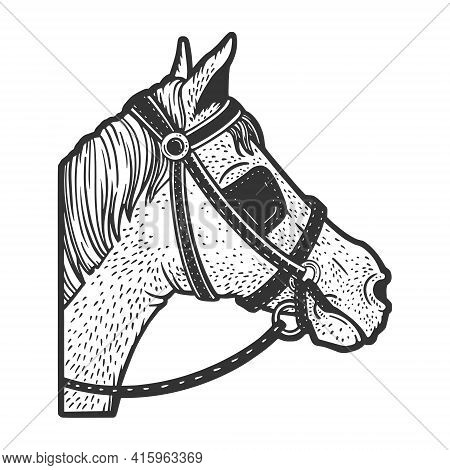 Blinkers Horse Tack On Horse Eyes Sketch Engraving Vector Illustration. T-shirt Apparel Print Design