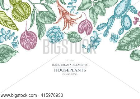 Floral Design With Pastel Ficus, Iresine, Kalanchoe, Calathea, Guzmania Cactus Stock Illustration