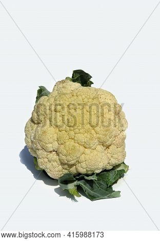 Closeup Of Cauliflower Isolated On White Background In Vertical Orientation