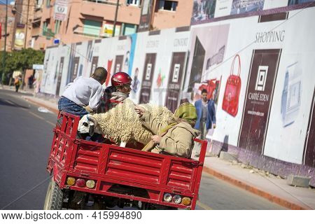 Marrakesh, Morocco, Nov 16: Moroccan Group Of People Driving A Red Car In Marrakech, With Goat Befor