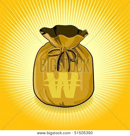 South Korea Won Gold Bag of Money Save for Success