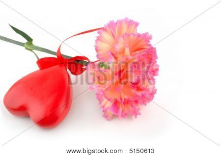 Carnation And A Heart
