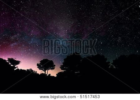 Center of The Milky Way with silhouette of mediteranean trees in Greece