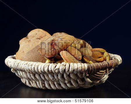 Xerocomus chrysenteron mushrooms in wicker basket shot on black background