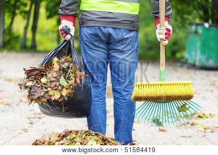 Man with brush and rake collects leaves