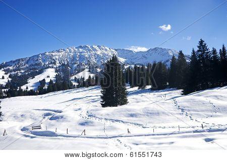 Winter In Allgau