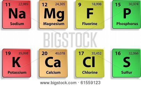 Major dietary elements