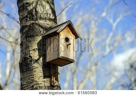 New Nesting Box On The Tree