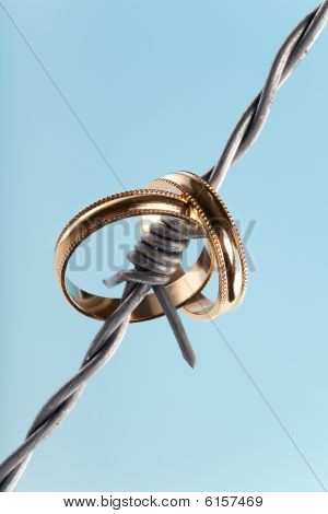 Rings On Barbed Wire