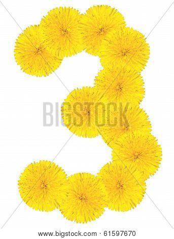 Number 3 Made From Dandelion Flower