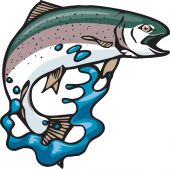 An illustrated Rainbow Trout jumping and splashing. Great for all the outdoors enthusiasts and outdoors publications. poster