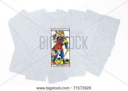 Tarot Card Matt Draw
