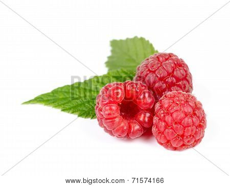 Heap Of Juicy Red Ripe Raspberry With Green Leaves