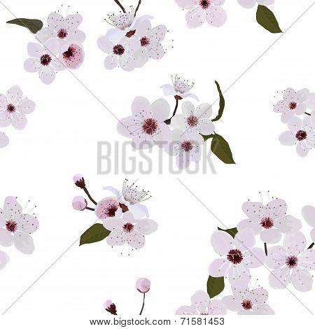 Almond flower pattern