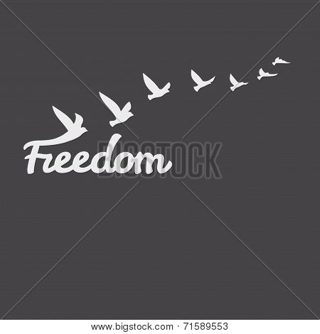 Freedom. Silhouette with flying animated birds