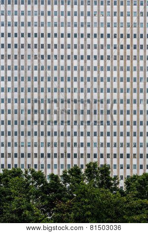 Many Windows In Steel And Concrete Building