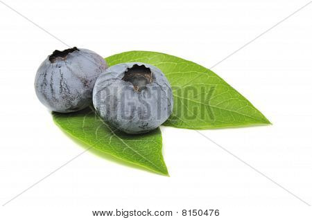 Blueberries on green leaves isolated on white poster
