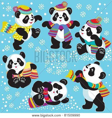 set with cartoon panda in winter
