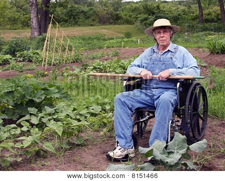 Handicapped Gardener
