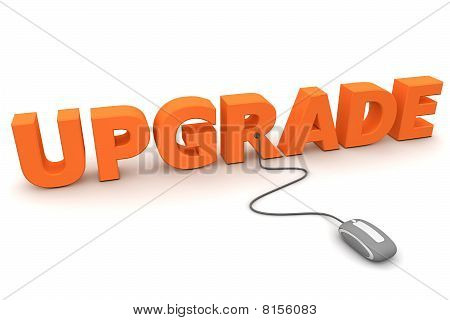 Browse The Upgrade - Orange
