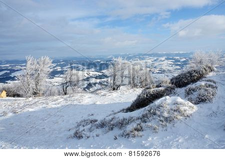 View from of Gemba mountain during winter sunny day trip Transcarpathians,Zakarpattia,Western Ukraine poster