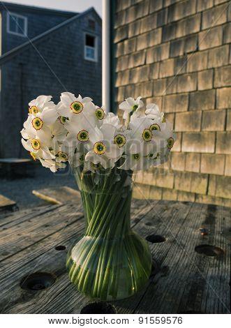 Flowers in a vase in Menemsha Massachusetts on Martha's Vineyard