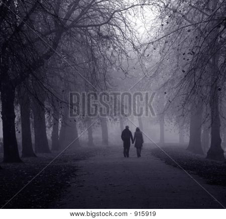 Young Couple Walking Through Avenue Of Trees In Dense Fog