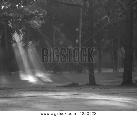 Fog Beams From The Left