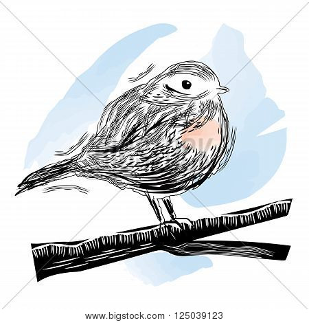 Vector illustration of robin bird sitting on the branch in linocut and watercolor style