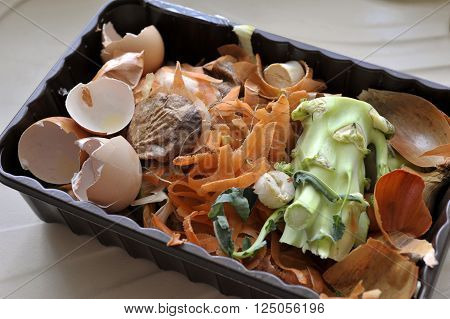 Kitchen Waste