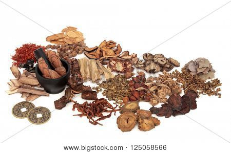 Chinese herb ingredients used in traditional herbal medicine with mortar and pestle and old feng shui coins over white background.